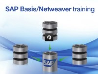 Everything You Need To Know About SAP Basic Training