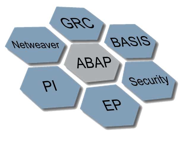 SAP basic modules