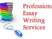 Top Reasons Why You Need An Essay Writer