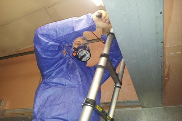 Asbestos Surveyor Do