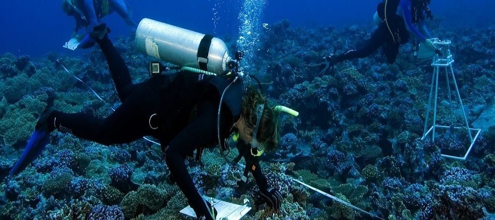Study Marine Science in Australia – The World's Largest Island Nation